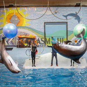 پروژه استخر دلفین برج میلاد
